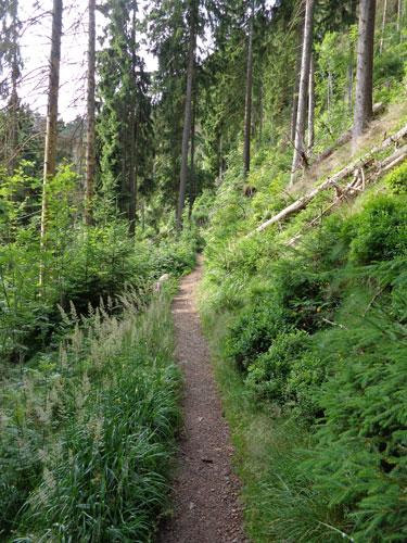 Wandern & Biken